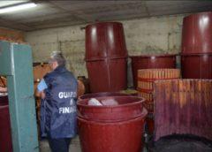 Produceva illegalmente mosto e vino: deferito dalla Gdf alla Procura della Repubblica.