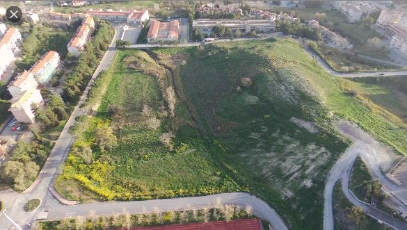 Piantumazione essenze arboreee nell'area del Parco Urbano di Enna bassa